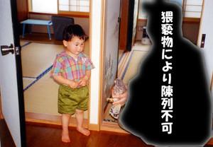 19930607_tonbi_02