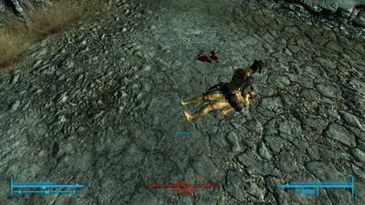 Fallout3_20140722_0602337652