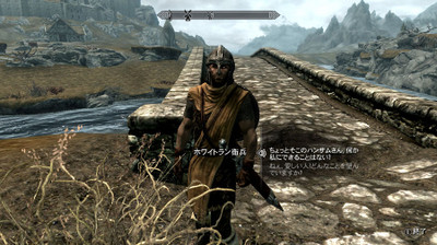 Varied_guards_and_stormcloaks_01