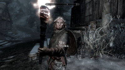 Varied_guards_and_stormcloaks_10