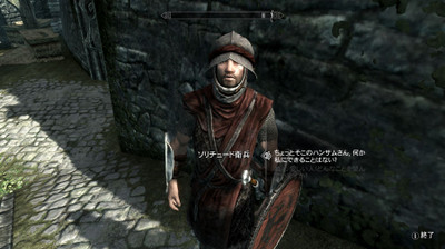 Varied_guards_and_stormcloaks_11