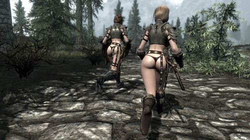 Followers_as_companions_08