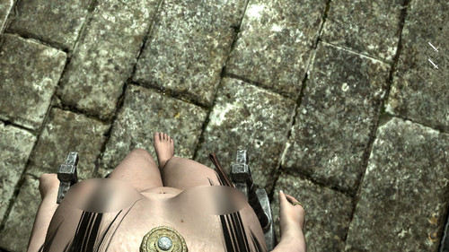 Skyrim_enhanced_camera_nude