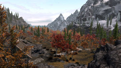 Realistic_aspen_trees_04