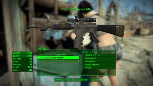 Service_rifle_001